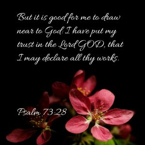Psalm 73.28
