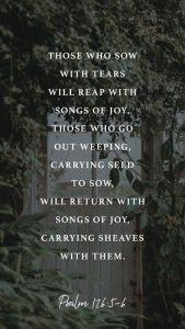 Psalm 126.5.6